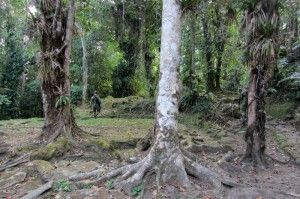 lost city colombia army