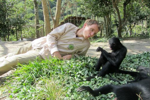 Volunteer with animals Bolivia