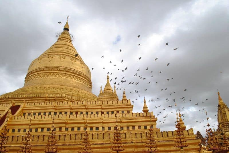 Birds flying over a temple in Bagan Myanmar