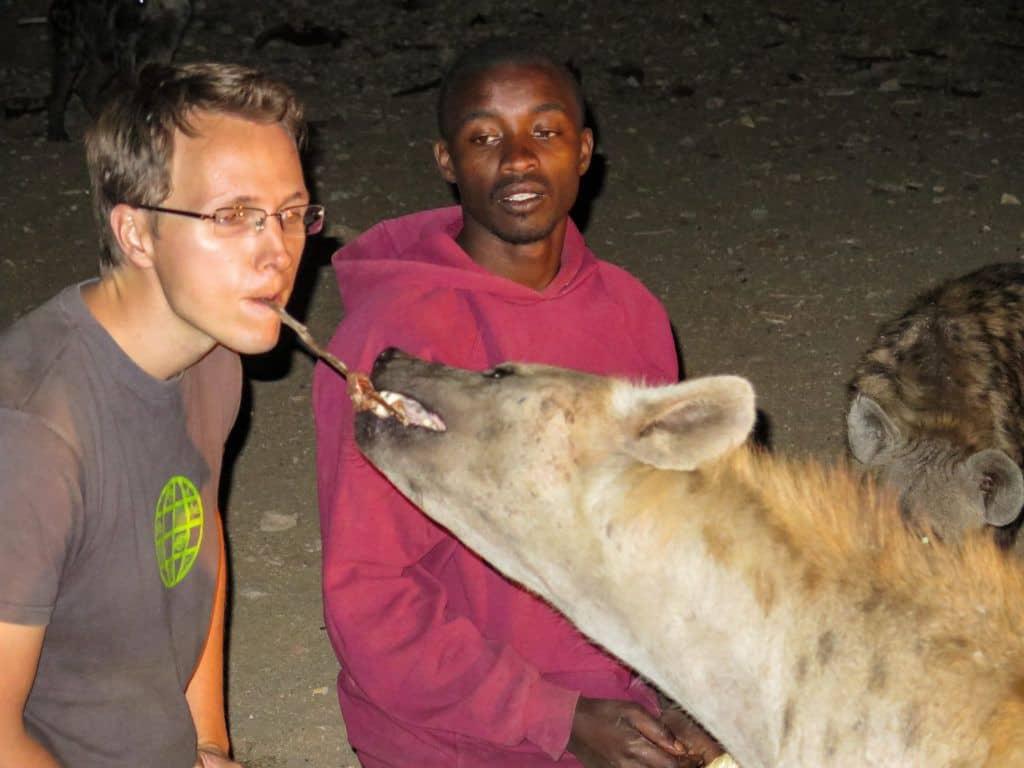 feeding hyenas ethiopia